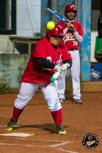 30 aprile 2019, Amatori Tigers vs Staranzano Ducks_8